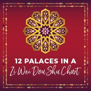 12 palaces in Zi Wei Dou Shu