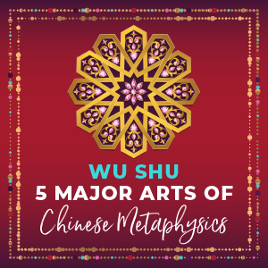 Wu Shu Five Major Arts